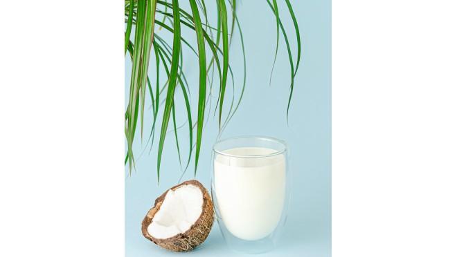 Biljno mleko
